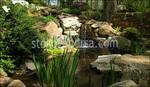 Πέτρα Falls